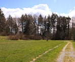 A wide trail to the east of the lake area in Aldergrove Regional Park