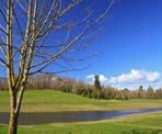 A beautiful day looking across Aldergrove Regional Park