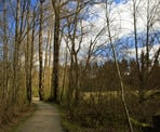 A trail near the picnic area in Aldergrove Regional Park