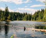 A scenic view of Stump Lake in Alice Lake Provincial Park