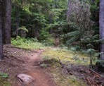 The 2nd section of the Ascent Trail called Big Burn