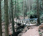 A Bridge on the Baden Powell Trail above Delbrook neighbourhood in North Vancovuer
