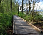 A bridge along the trail that loops through Brae Island Regional Park
