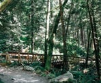 One of the wooden bridge along the hiking trail on the east side of Buntzen Lake