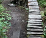 A wooden ramp for mountain bikers on the Dead Moped Trail on Burnaby Mountain. A wooden ramp for mountain bikers on the Dead Moped Trail on Burnaby Mountain