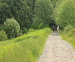 Horses use some of the multi-use trails in Campbell Valley Park in Langley