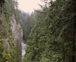 The view of the Capilano Canyon from the viewing platform along the Capilano Pacific Trail