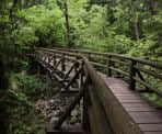 A wooden bridge crosses a rocky creek along the upper section of the Capilano Pacific Trail