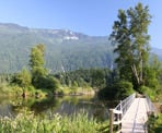 The floating walkways out to the viewpoint at Cheam Lake Wetlands in Chilliwack, BC