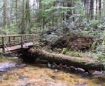 A wooden bridge across Clack Creek in Cliff Gilker Regional Park