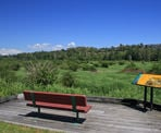 A bench with a view at Colony Farm Regional Park