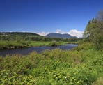 The view looking towards the mountains along the Coquitlam River at Colony Farm Regional Park