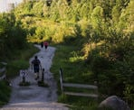 Hikers walk up the 2nd section, the steepest part of the Coquitlam Crunch