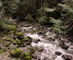 The water rushing down the creek below Cypress Falls in West Vancouver