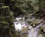 The scenic canyon area near Cypress Falls in West Vancouver
