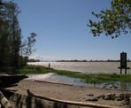 The view of the Fraser River from the Island Tip trail on Deas Island
