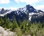 The view of Martin Peak West from the Demon Ridge Trail