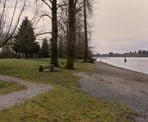 The picnic area of Edgewater Bar in Derby Reach Regional Park, Langley