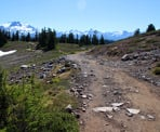 The trail to Elfin Lakes passes through the alpine area of Garibaldi Provincial Park