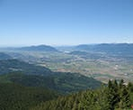 The view looking out towards the Fraser Valley from the top of Elk Mountain