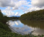 A view of Bedford Channel along the Fort to Fort Trail in Fort Langley