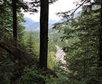The Gold Creek viewpoint along the trail to Golden Ears