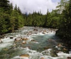 A view of Gold Creek while crossing the bridge in Golden Ears Provincial Park