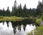 The reflection in the calmness of Goldie Lake on Mount Seymour