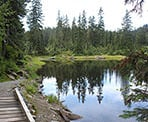 The trail loops around Goldie Lake and crosses a small wooden bridge