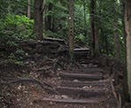 The uneven steps make hiking up the steep Grouse Grind very difficult