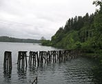 Old pillars used for railway lines near Hayward Lake in Mission, BC