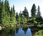 A small mountain lake that is unnamed along the trail to Hollyburn Mountain