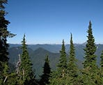 A viewpoint along the Hollyburn Mountain trail
