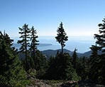 The view from the top of Hollyburn Mountain