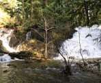 The view of Homesite Creek Falls from the Nature Trail