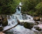 There are scenic views of 19 Mile Creek including small waterfalls on the way to Iceberg Lake