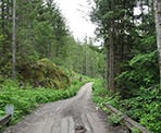 The gravel road and wooden bridge to Levette Lake