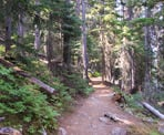 The Lightning Lake Loop Trail in Manning Provincial Park