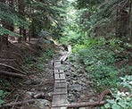 The section of trail along Lower Hollyburn follows some make-shift boardwalks