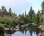 A small pond along the hiking trail to Mount Seymour
