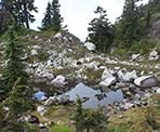 The trail passes through the mountains of Mount Seymour