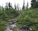 The Mount Strachan trail in Cypress Provincial Park