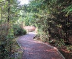 The walking trail through the scenic Mundy Park in Coquitlam, BC