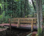 A wooden bridge crosses one of the creeks in Mundy Park