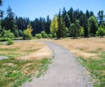The area near the Disc Golf course in Mundy Park in Coquitlam