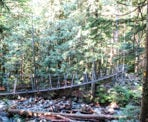 The suspension bridge that crosses the creek just down from Norvan Falls