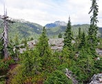 A view of Cathedral Mountain from the Paton Peak Trail