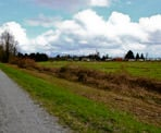 The Trans Canada Trail is part of the Pitt River Regional Greenway in Pitt Meadows