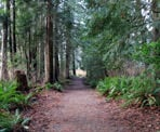 The trail that leads away from the playground area at Porpoise Bay