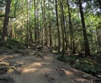 The Baden Powell Trail near Deep Cove on the way to Quarry Rock